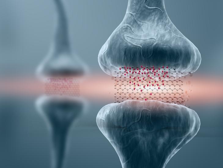 Мемристоры из графена открывают двери для биомиметических вычислений.