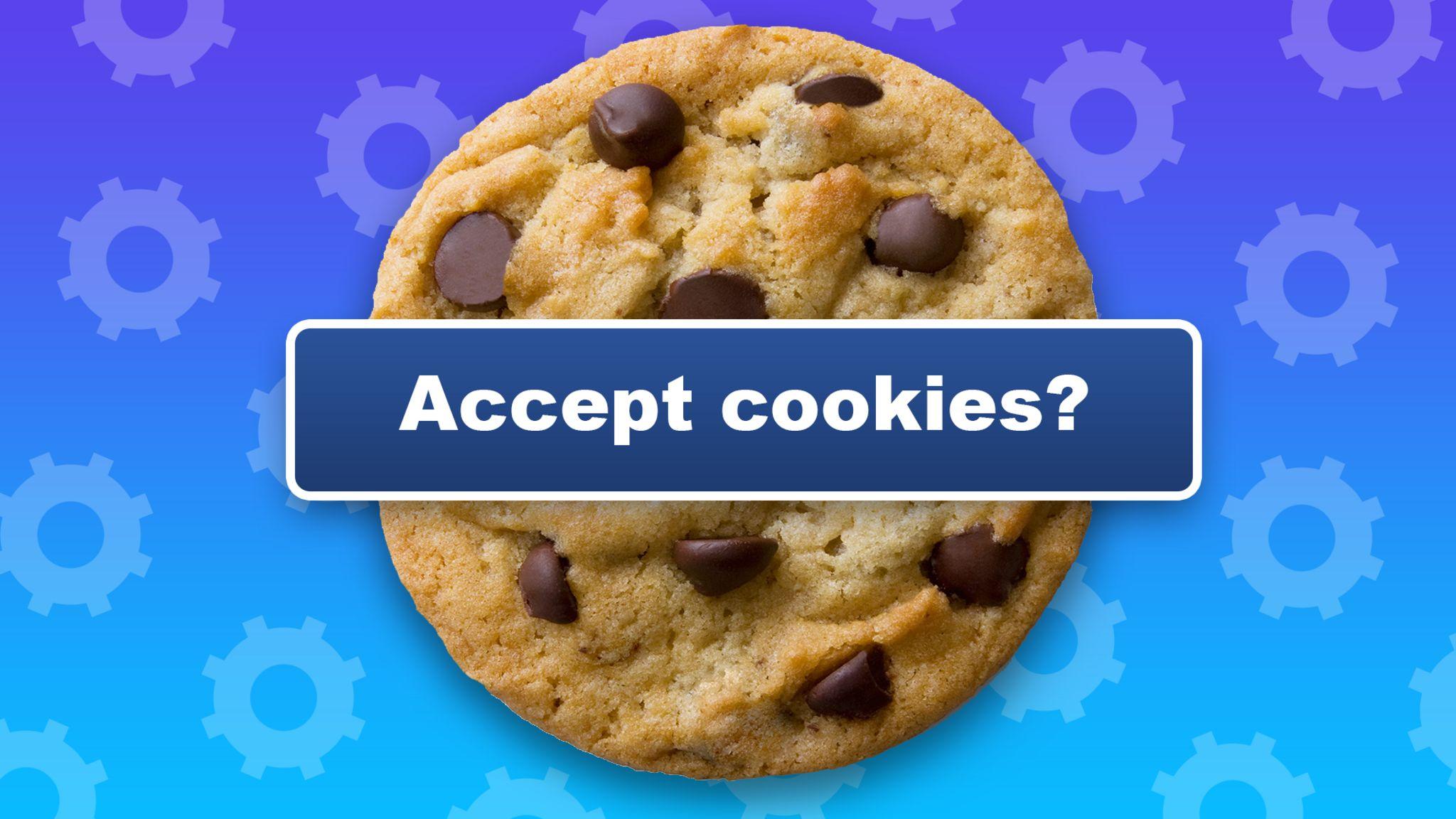 террор файлов cookie