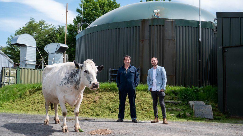 Фермер по крипто-майнингу Филип Хьюз (в центре) и Джош Риддетт с одним из своих коллег-быков
