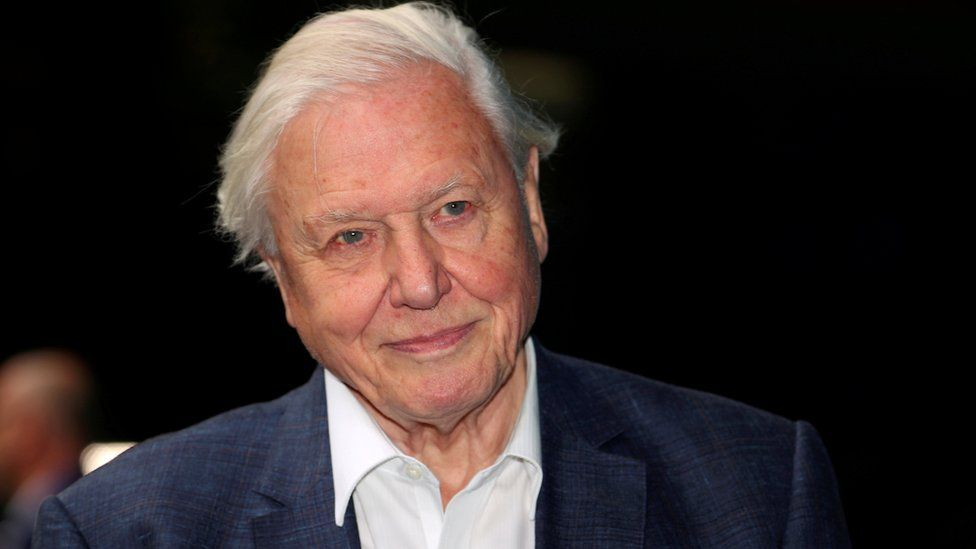 Sir David Attenborough is among those supporting the Big Broadcasting Challenge campaign