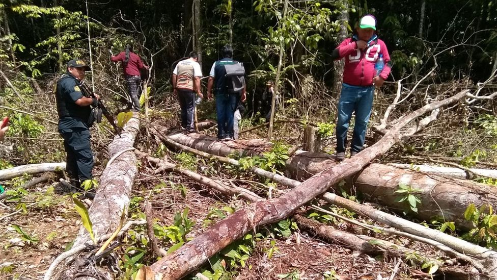 Лидеры общины вместе с сотрудниками природоохранных органов расследуют незаконную вырубку тропических лесов на своей территории
