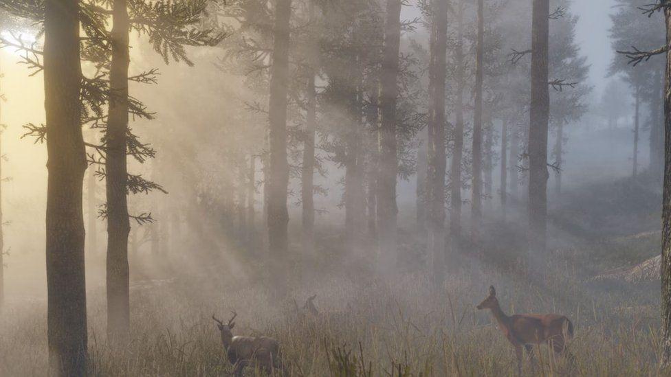 В Red Dead Redemption 2 представлены такие животные, как белохвостый олень, кролик-джекрабт и аллигаторовая щелкающая черепаха