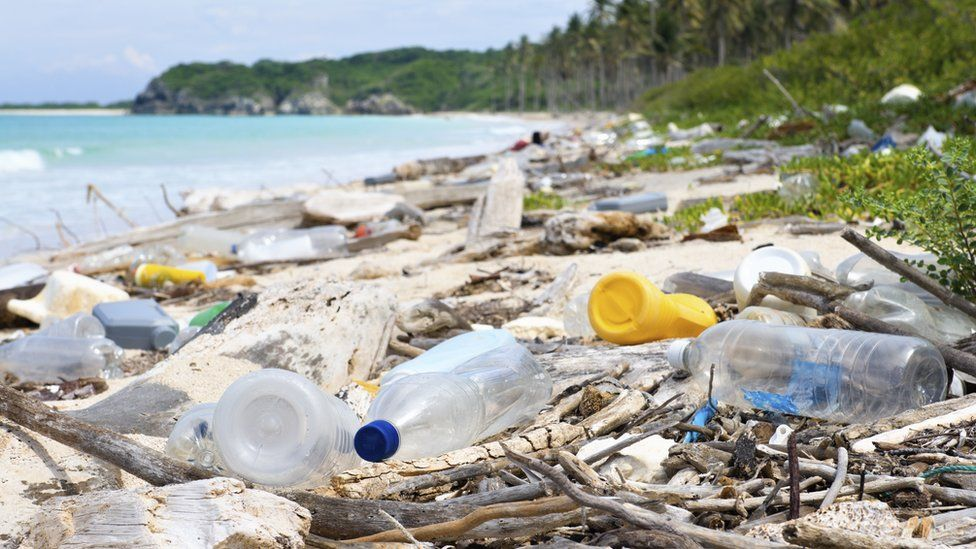 The research could lead to enzymes that can break down the plastic polluting our environment